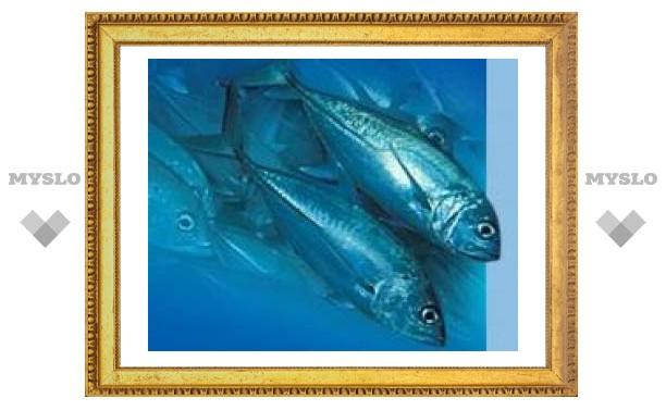 Биологи научат рыб ловиться на звук