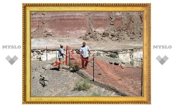 В Северной Америке нашли останки динозавров