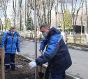 «Новомосковск, дыши!»: стартовала программа озеленения города 2020 года