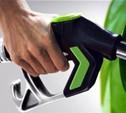 Цены на бензин до конца лета останутся нетронутыми