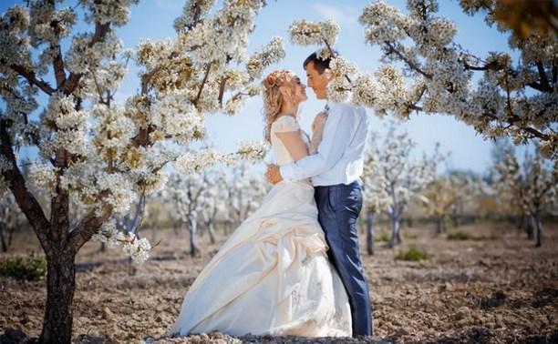 На Красную горку в Тульской области сыграют свадьбу 408 пар