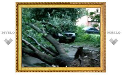 Косая Гора пострадала от урагана