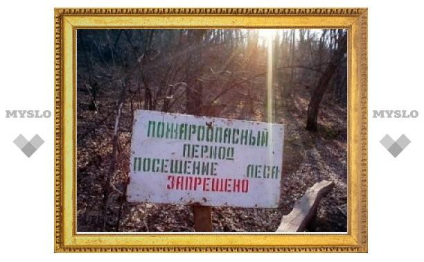 Тулякам запретили ходить в лес