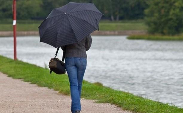 Погода в Туле 13 августа: до +25 и небольшой дождь
