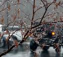 Последние выходные марта будут дождливыми и пасмурными