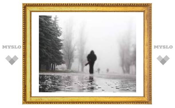 В Туле ночью +4 и дождь