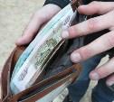 Житель Новомосковска украл у женщины деньги из кошелька