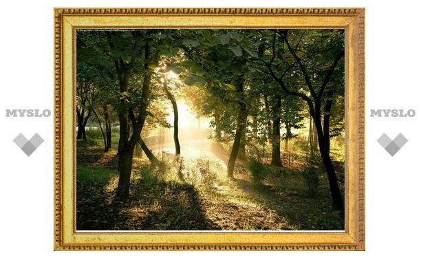 В Белоусовском парке отметят День леса