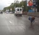 Тулячка спасла котёнка из-под колёс автомобилей на проспекте Ленина