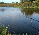 В Заокском районе рыбак погиб, зацепив удочкой провода