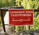 Как тульским дачникам избежать запрета на строительство или посадку сельхозкультур