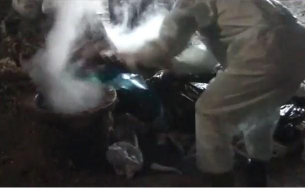Россельхознадзор опубликовал видео сжигания мясной продукции в Тульской области