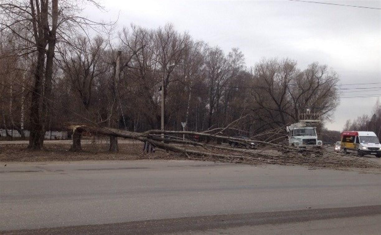 МЧС продлило метеопредупреждение на 30 марта