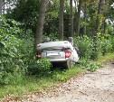 Под Тулой водитель «Лады Приоры» разбился насмерть,  врезавшись в дерево