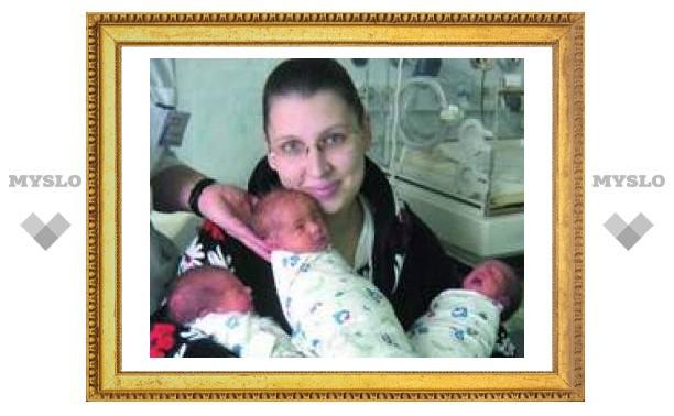 В туле родились тройняшки!