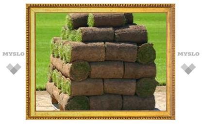 """В """"Лужниках"""" постелят газон, выращенный в Туле"""
