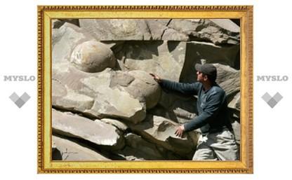 Палеонтологи опровергли существование чеченских динозавров