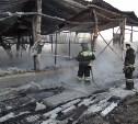 В Туле в конюшне сгорели 10 лошадей