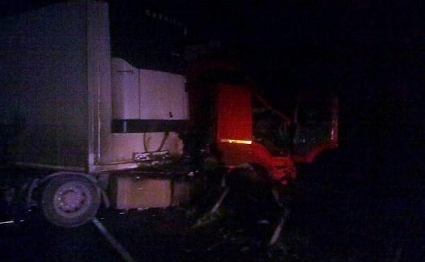 Ночью в массовом ДТП в Плавском районе пострадали двое мужчин