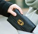 Туляк украл кошелек у студентки возле университета