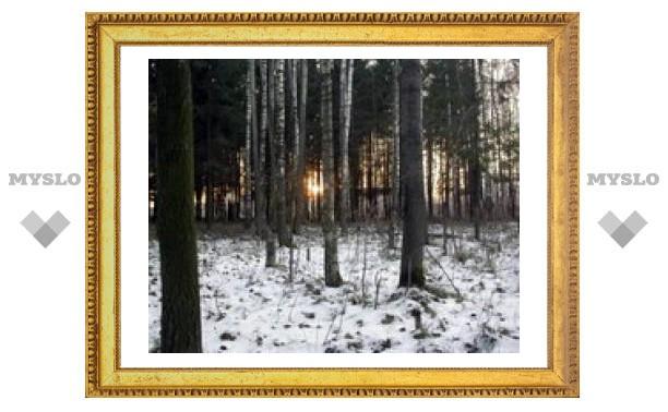 5 января: Узнай погоду в Туле на ноябрь
