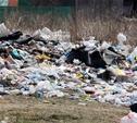 К июню в Тульской области ликвидируют несанкционированные свалки