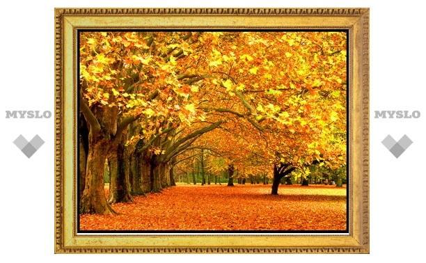 20 и 21 сентября Тулу ждет ясная и теплая погода