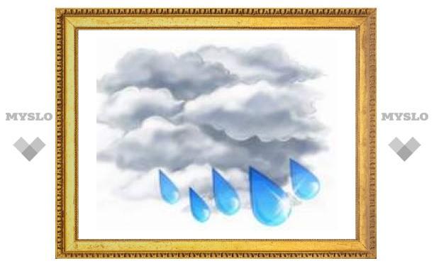 Утром в Туле возможен дождь