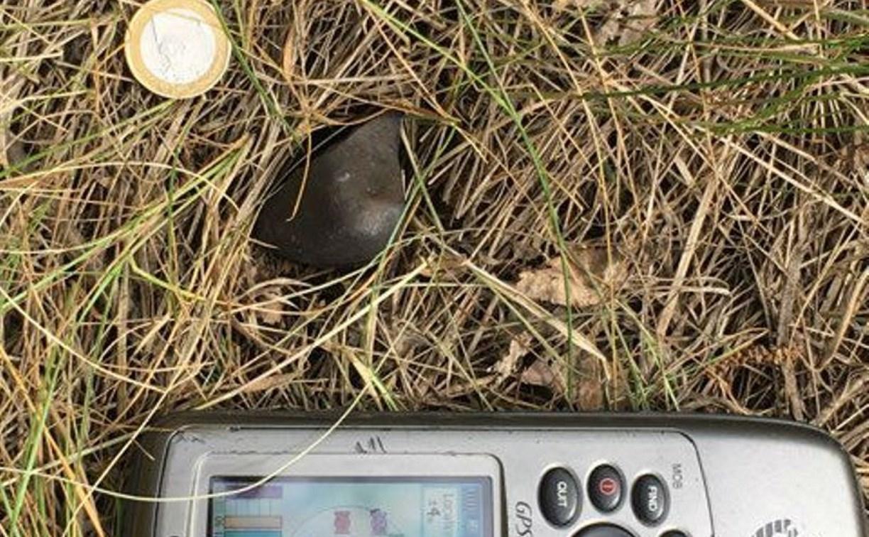Кусок метеорита, напугавшего жителей Ефремова, найден в Липецкой области