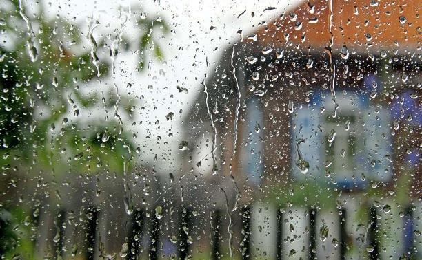 Погода в Туле 1 августа: кратковременный дождь, до +23 градусов
