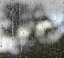Погода в Туле 17 апреля: облачно, мокро и ветрено