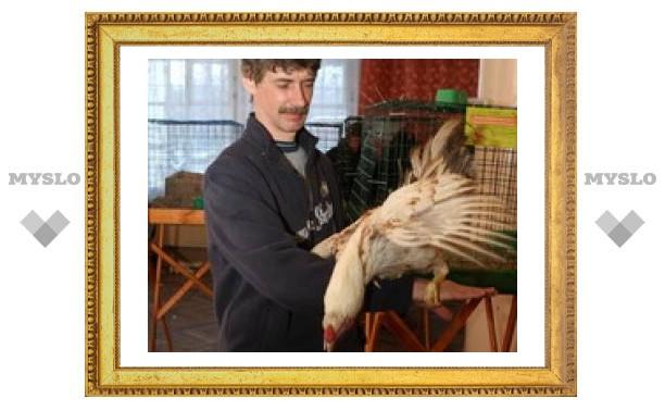 Тулякам показали уникальных птиц