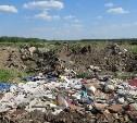 За свалку на землях сельхозназначения администрация Веневского района заплатит 200 000 рублей