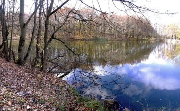 Тульский чиновник незаконно продал пруд жителю Москвы