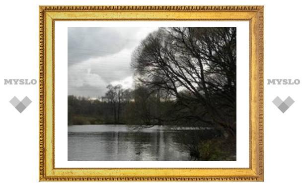 Москвич купил в Ясногорске пруд