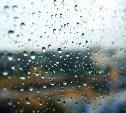 Погода в Туле 4 апреля: дождливо, ветрено, до +12 градусов