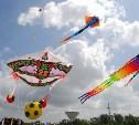 Туляков приглашают научиться делать воздушных змеев на фестивале «Запусти мечту в небо»