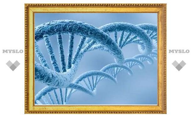 """Биологи научились """"читать"""" индивидуальные молекулы ДНК"""