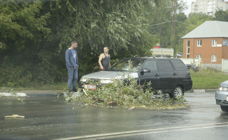 Последствия стихии в Туле: фото и видео