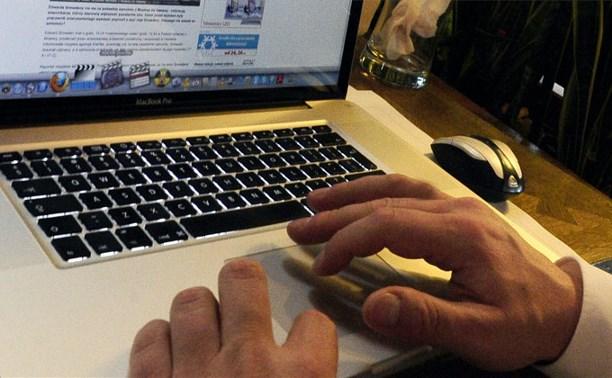 Елена Мизулина предложила сажать интернет-педофилов на 12 лет