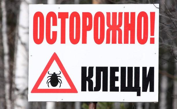 В Тульской области в 2015 году зафиксировано 33 случая нападения клещей