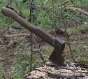 Экс-руководители  ГУ «Чернское лесничество» и ООО «Черньлесресурс» осуждены за незаконную вырубку деревьев
