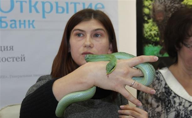На строительство экзопарка в Комсомольском парке потратят 300 млн рублей