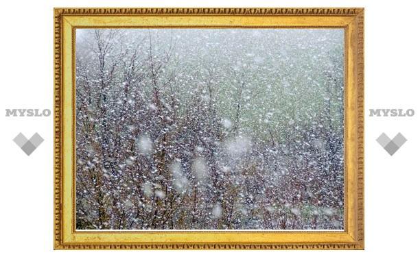 Центр России завалит снегом