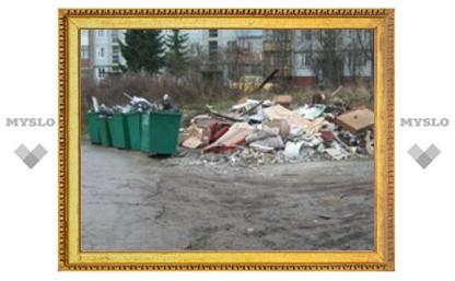 В поселке под Тулой уже год не вывозят мусор