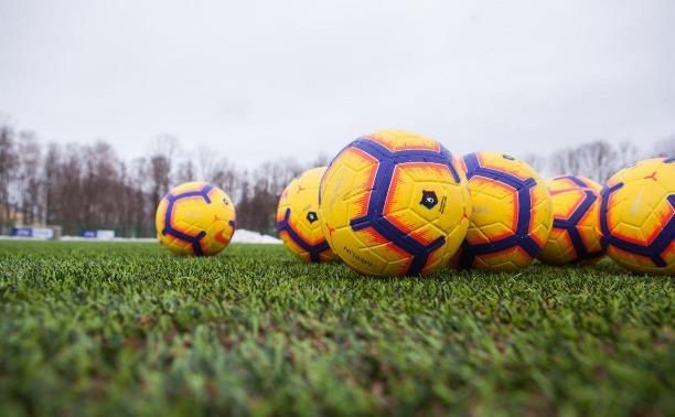 В Туле на территории Центрального стадиона появится футбольное поле с подогревом