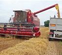 Тульские аграрии приступили к уборке зерновых