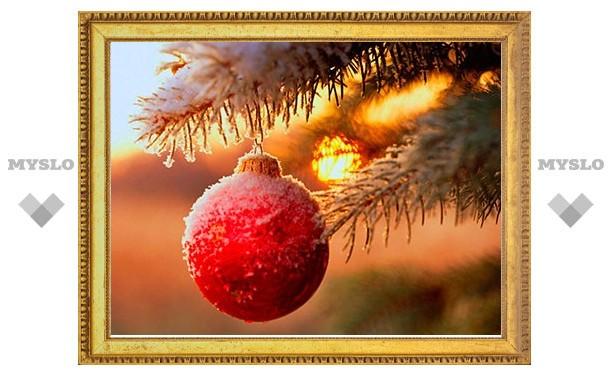 Новогодние праздники в Туле официально заканчиваются