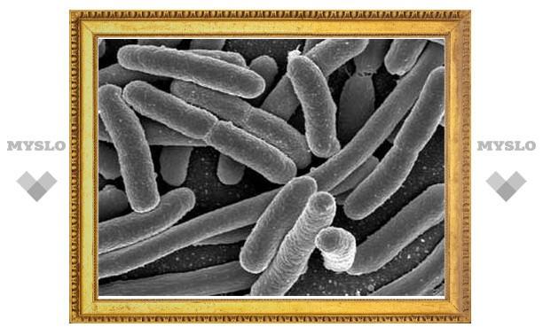 Ученый обнаружил недостающий этап формирования живых организмов