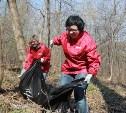 Тульская область примет участие во Всероссийском экологическом субботнике